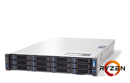 Virtualization - Microsoft - RECT™ RS-8625MR12 - 2U Rack Server with AMD Ryzen 3000 CPUs